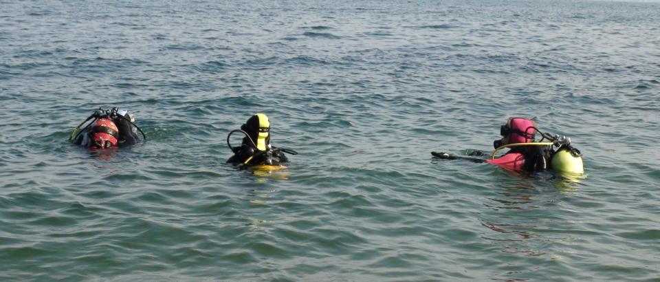 Jacjy Les apprenties plongeuses encadrées observent une démo de Jacky.jpg